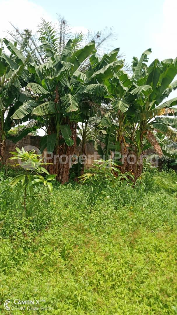 Residential Land Land for sale Off Lagos Ibadan express road Mowe Obafemi Owode Ogun - 0