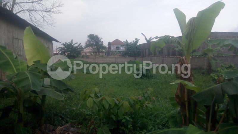 Commercial Land Land for sale Eneka Road, By Army Range  Eneka Port Harcourt Rivers - 0