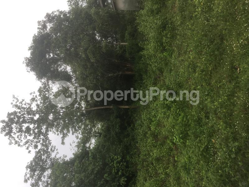 Commercial Land for rent Osun Road Atikori Ijebu Igbo Ijebu North Ijebu Ogun - 0