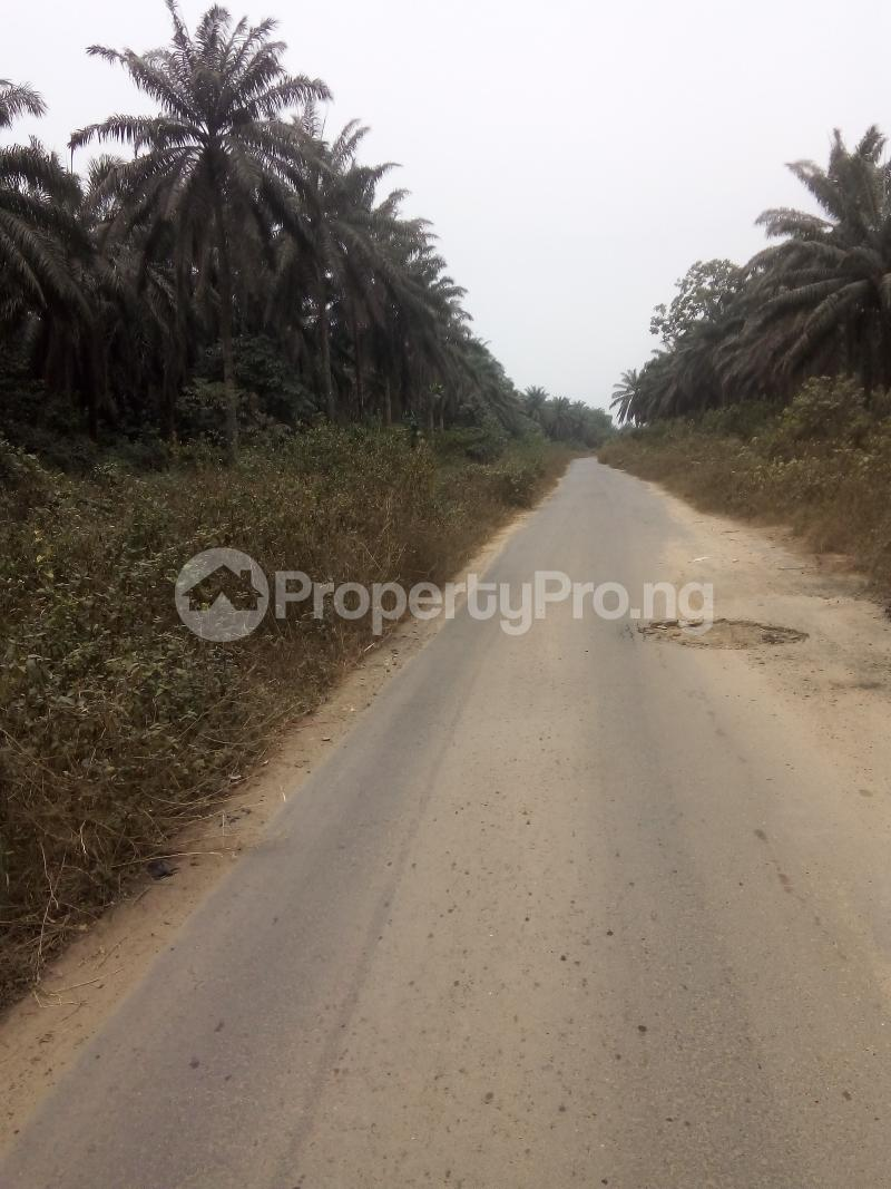 Mixed   Use Land Land for sale Just before Obehie junction, Abia State Ukwa West Abia - 5
