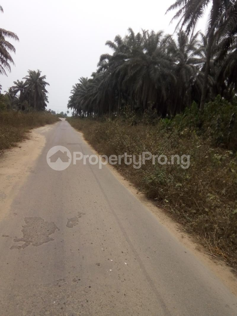 Mixed   Use Land Land for sale Just before Obehie junction, Abia State Ukwa West Abia - 1