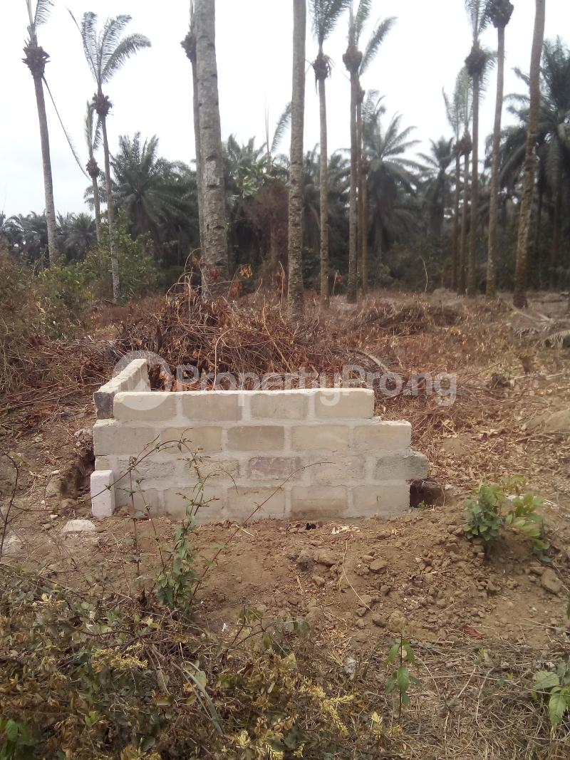 Mixed   Use Land Land for sale Just before Obehie junction, Abia State Ukwa West Abia - 6