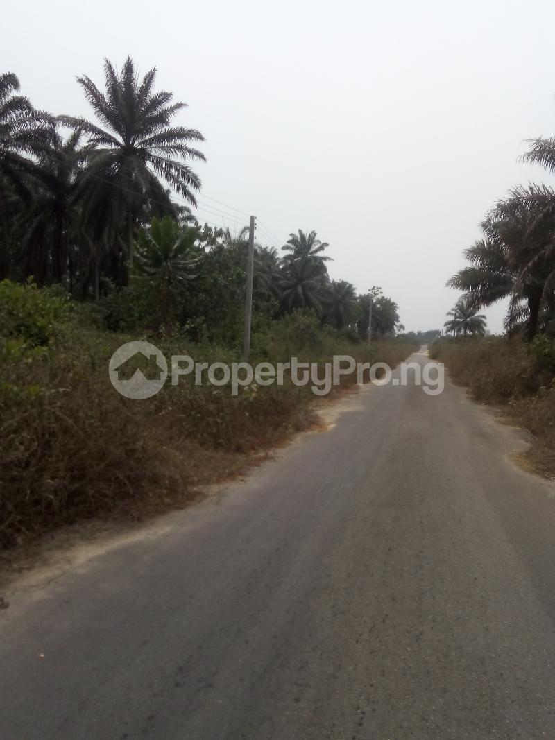 Mixed   Use Land Land for sale Just before Obehie junction, Abia State Ukwa West Abia - 3