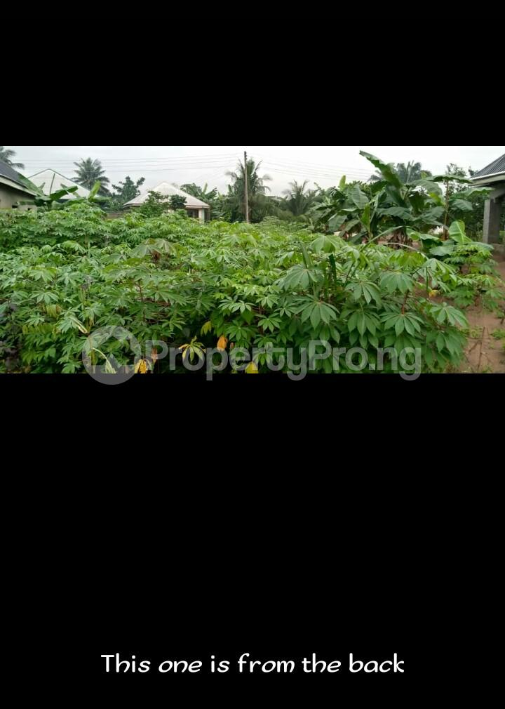Residential Land Land for sale Igbo Etche close to shell Etche Rivers - 4