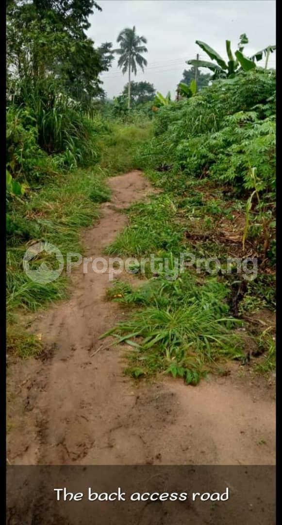 Residential Land Land for sale Igbo Etche close to shell Etche Rivers - 2