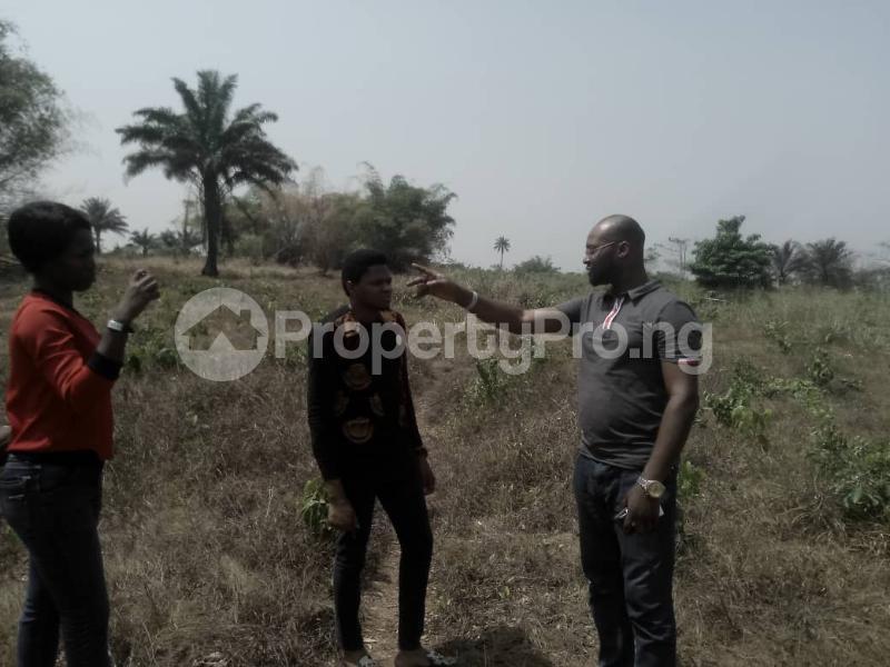 Industrial Land for rent Land For Sale At Ekowe Community For Industry Egor Edo - 0
