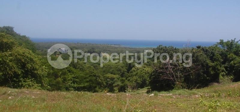 Industrial Land Land for sale Ofikin town Off ofikin Agunrege Road just 30 minuets drive from iseyin town Iseyin Oyo - 0
