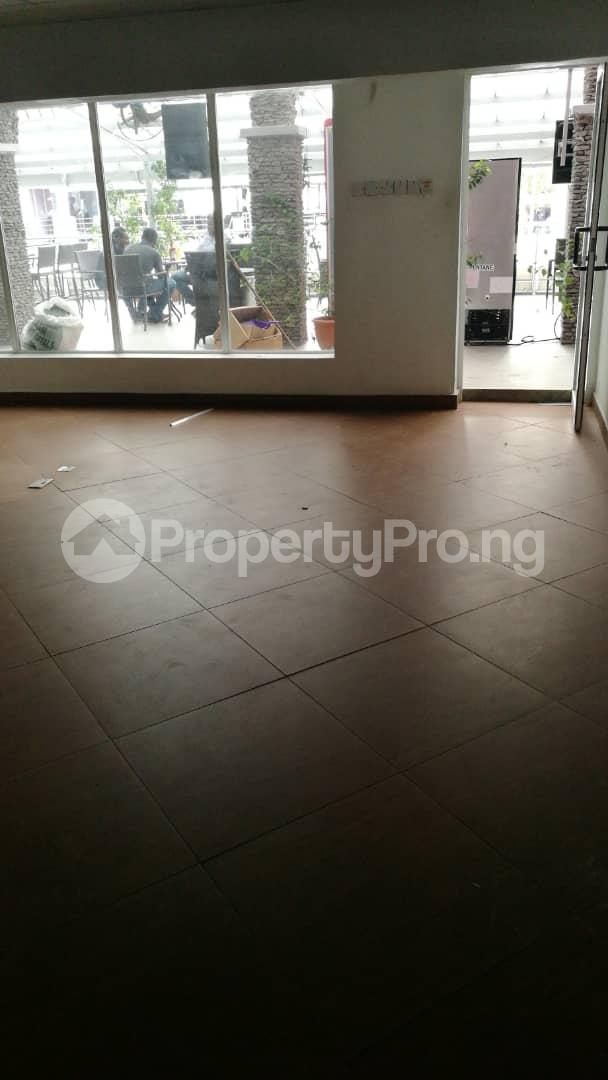 Shop in a Mall Commercial Property for rent 141 Ahmadu Bello Way, opp Silverbird Galleria Victoria Island Ahmadu Bello Way Victoria Island Lagos - 0