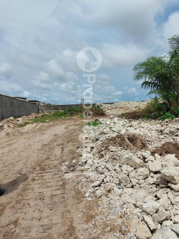 Residential Land Land for sale Behind Blenco supermarket Sangotedo Lagos - 2