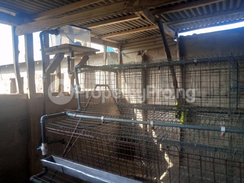 2 bedroom Detached Bungalow House for sale Itolu Community, Opposite Federal Polytechnic Ilaro Beautiful Gate. Yewa South Yewa Ogun - 8