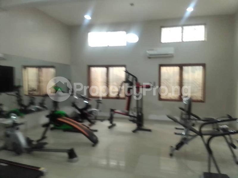 2 bedroom Massionette for rent Maitama Abuja - 14