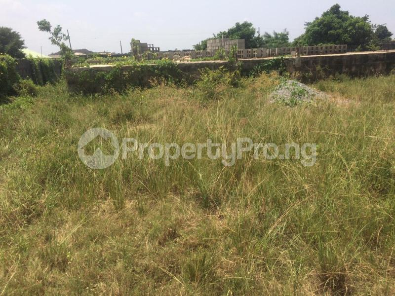 Mixed   Use Land for sale Directly Facing Oretta Road By Mr Biggs Bus Stop Igbogbo Ikorodu Lagos - 10