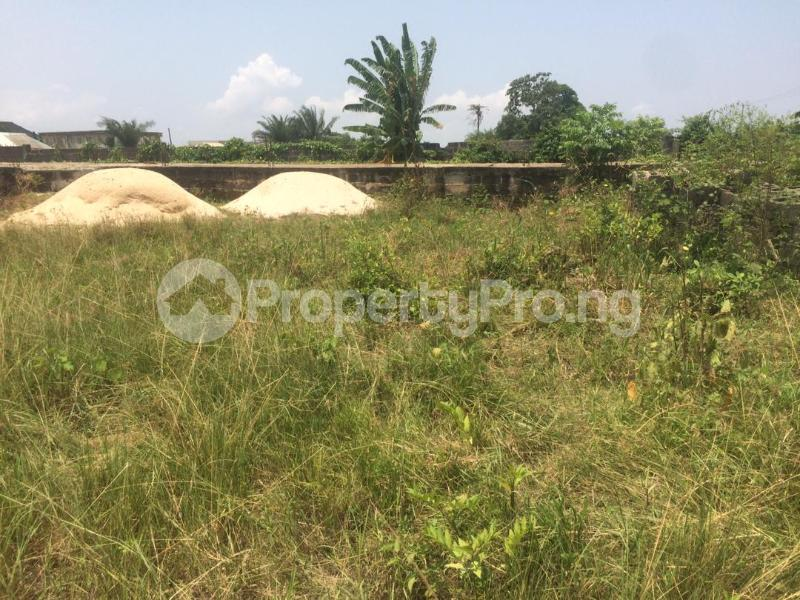 Mixed   Use Land for sale Directly Facing Oretta Road By Mr Biggs Bus Stop Igbogbo Ikorodu Lagos - 0