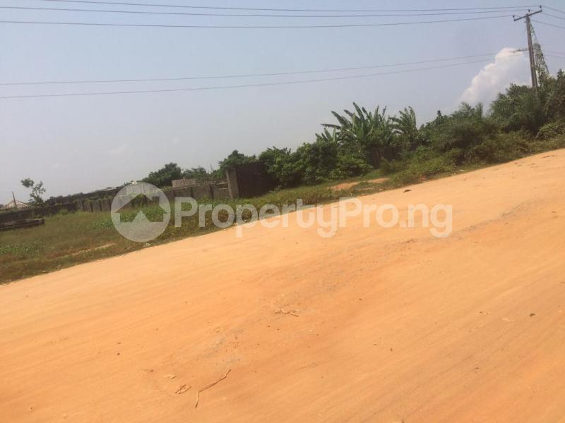 Mixed   Use Land for sale Directly Facing Oretta Road By Mr Biggs Bus Stop Igbogbo Ikorodu Lagos - 3