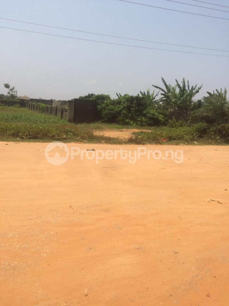 Mixed   Use Land for sale Directly Facing Oretta Road By Mr Biggs Bus Stop Igbogbo Ikorodu Lagos - 1
