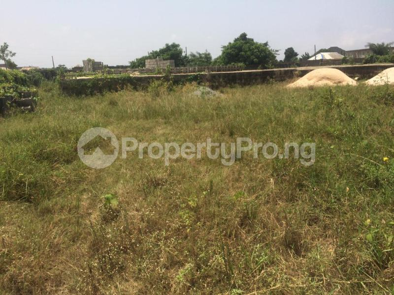 Mixed   Use Land for sale Directly Facing Oretta Road By Mr Biggs Bus Stop Igbogbo Ikorodu Lagos - 11