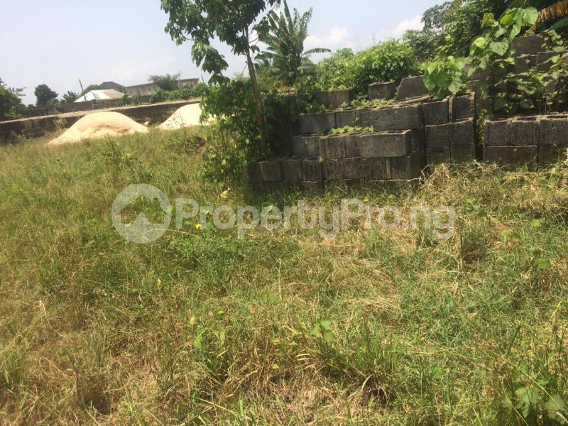 Mixed   Use Land for sale Directly Facing Oretta Road By Mr Biggs Bus Stop Igbogbo Ikorodu Lagos - 9
