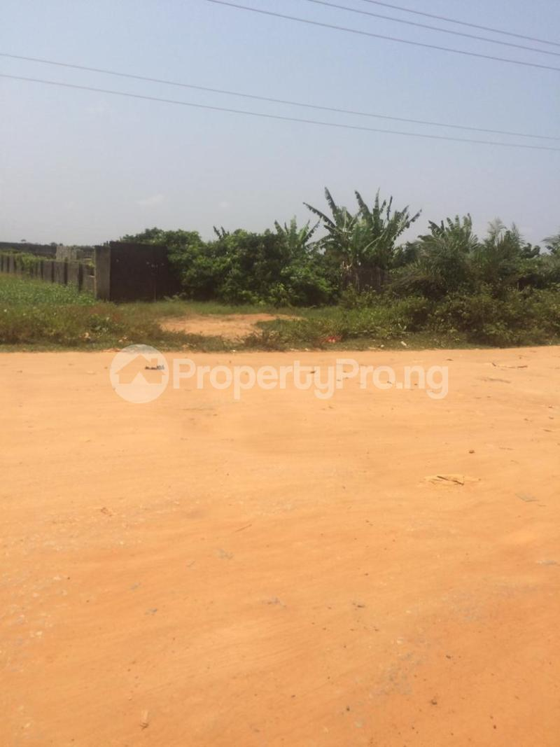 Mixed   Use Land for sale Directly Facing Oretta Road By Mr Biggs Bus Stop Igbogbo Ikorodu Lagos - 2