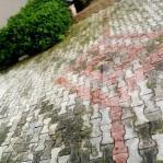 3 bedroom Detached Bungalow House for sale Crown estate Sangotedo Ajah Lagos - 14