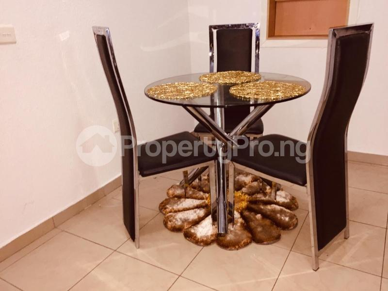 3 bedroom Studio Apartment Flat / Apartment for shortlet 1004 1004 Victoria Island Lagos - 17