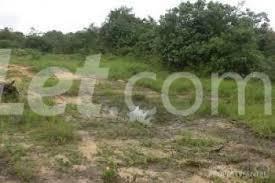 Land for sale Umuhu Ngor-Okpala Imo - 2