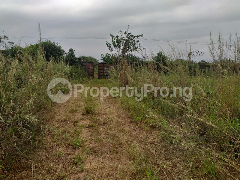 Industrial Land Land for sale Onitsha Road Industrial Layout  Owerri Imo - 2