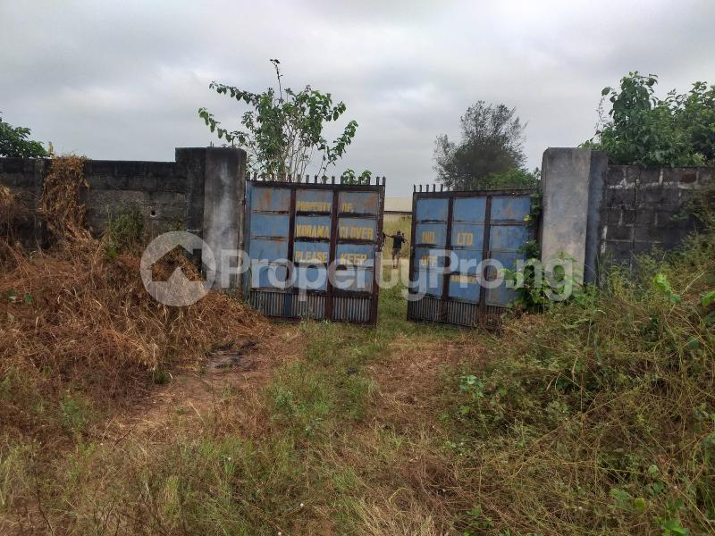 Industrial Land Land for sale Onitsha Road Industrial Layout  Owerri Imo - 3
