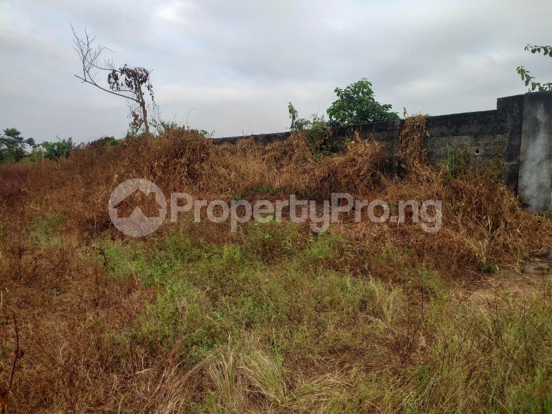 Industrial Land Land for sale Onitsha Road Industrial Layout  Owerri Imo - 9