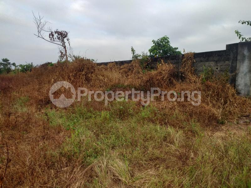 Industrial Land Land for sale Onitsha Road Industrial Layout  Owerri Imo - 1