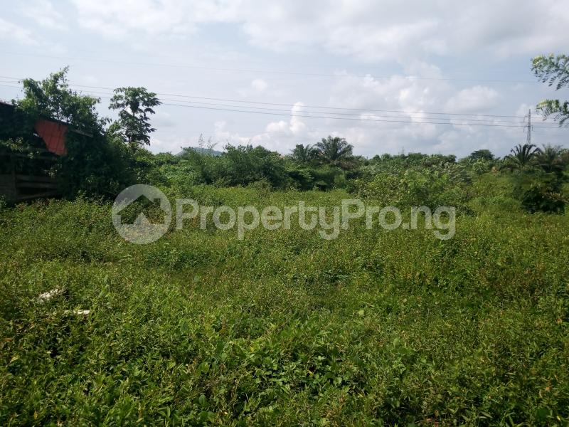 Industrial Land for sale Ilesha Express Road Akure Akure Ondo - 0