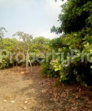 Commercial Land Land for sale   Ogbomosho Oyo - 0