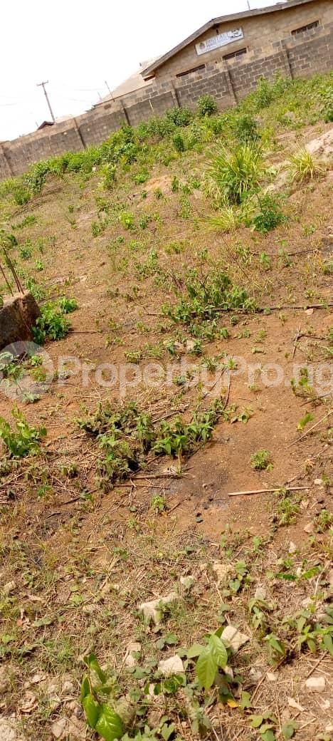 Mixed   Use Land Land for sale Agbara/Lusada road Agbara Agbara-Igbesa Ogun - 3