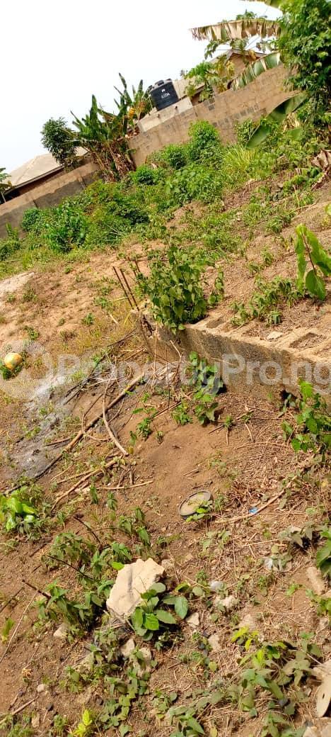 Mixed   Use Land Land for sale Agbara/Lusada road Agbara Agbara-Igbesa Ogun - 2