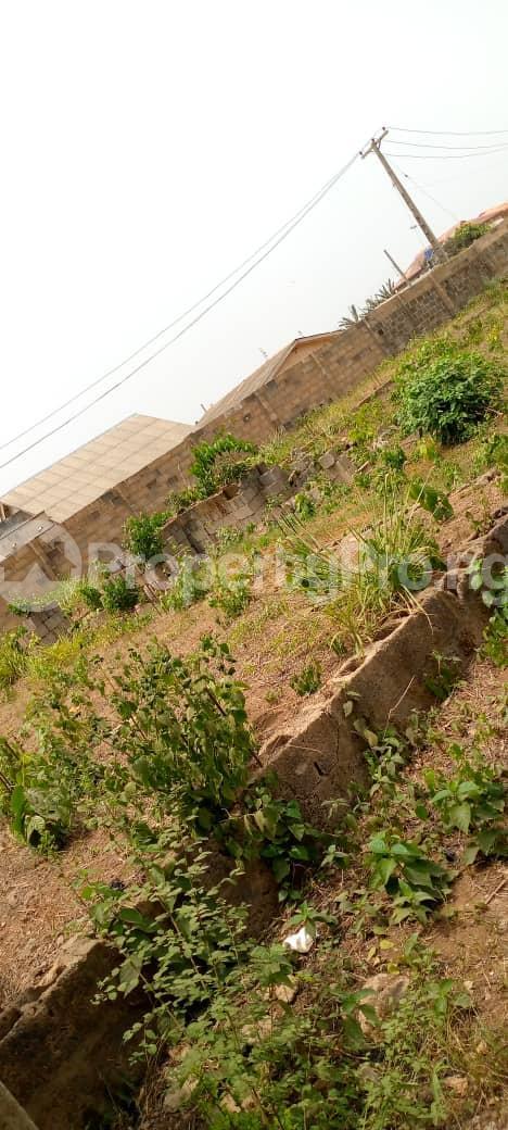 Mixed   Use Land Land for sale Agbara/Lusada road Agbara Agbara-Igbesa Ogun - 4