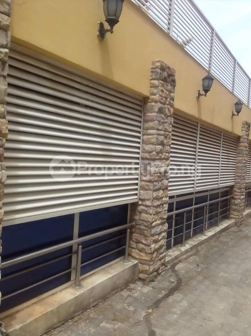 3 bedroom Massionette for rent Maitama Abuja - 0