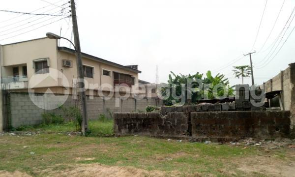 Residential Land for sale Good Homes Estate, Ado Road Ado Ajah Lagos - 3