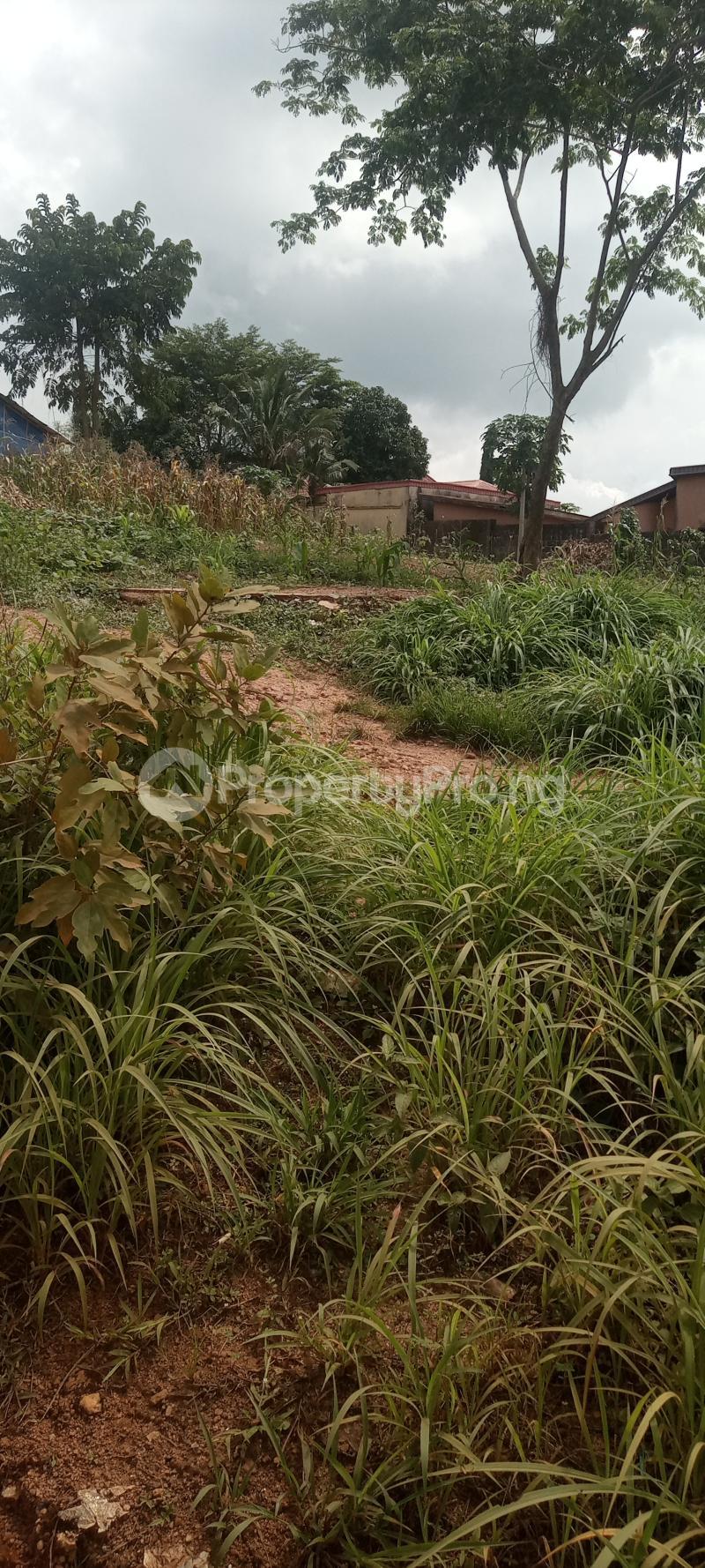 Residential Land for sale Oka, Along Stella Palace Hotel Road Ondo City Ondo West Ondo - 7