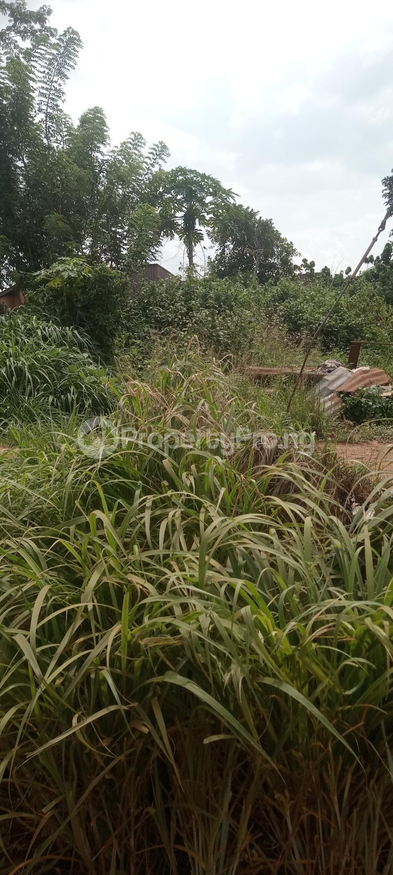 Residential Land for sale Oka, Along Stella Palace Hotel Road Ondo City Ondo West Ondo - 5