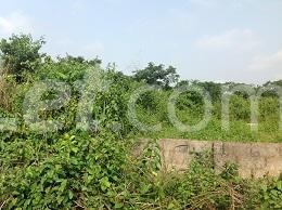 10 bedroom Land for sale Obere Ota-Idiroko road/Tomori Ado Odo/Ota Ogun - 12
