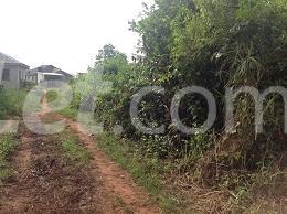10 bedroom Land for sale Obere Ota-Idiroko road/Tomori Ado Odo/Ota Ogun - 7
