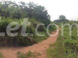 10 bedroom Land for sale Obere Ota-Idiroko road/Tomori Ado Odo/Ota Ogun - 9