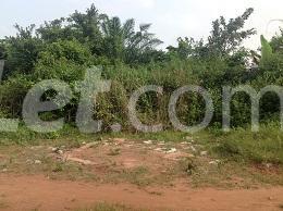 10 bedroom Land for sale Obere Ota-Idiroko road/Tomori Ado Odo/Ota Ogun - 10