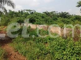 10 bedroom Land for sale Obere Ota-Idiroko road/Tomori Ado Odo/Ota Ogun - 13