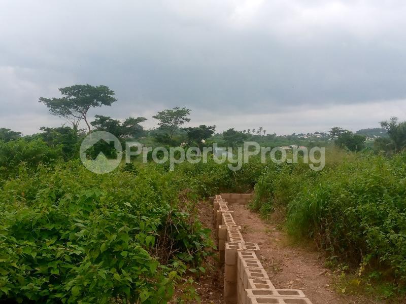 Residential Land for sale Lane 5, Aba Ayo Area Near Oke Mekun Elebu Extension, Oluyole Extension Off Akala Express Akala Express Ibadan Oyo - 3