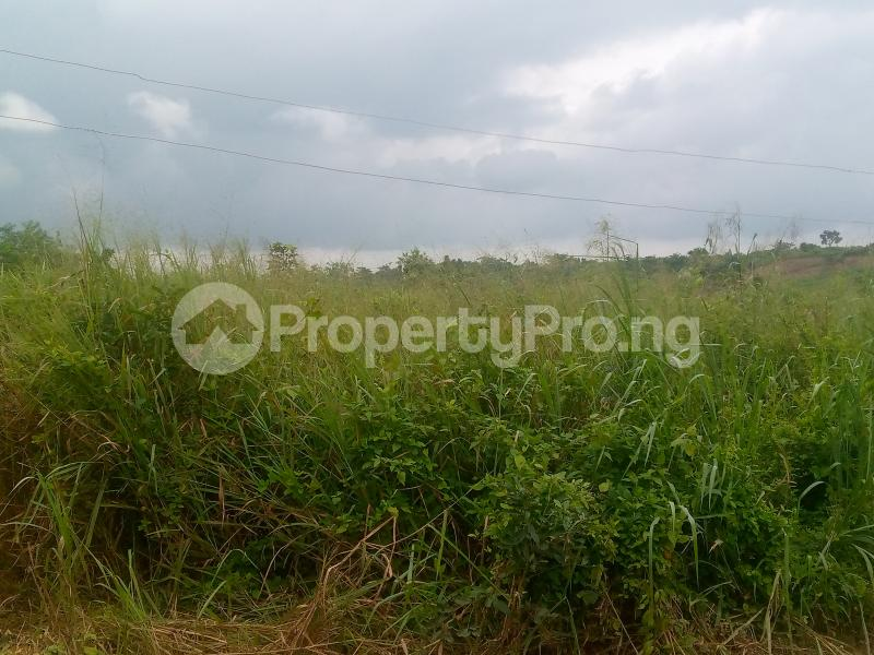 Residential Land for sale Lane 5, Aba Ayo Area Near Oke Mekun Elebu Extension, Oluyole Extension Off Akala Express Akala Express Ibadan Oyo - 4