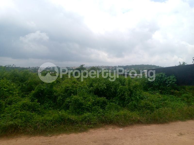 Residential Land for sale Lane 5, Aba Ayo Area Near Oke Mekun Elebu Extension, Oluyole Extension Off Akala Express Akala Express Ibadan Oyo - 6