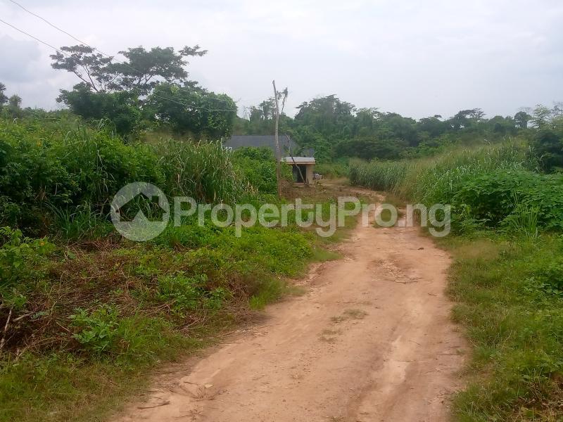 Residential Land for sale Lane 5, Aba Ayo Area Near Oke Mekun Elebu Extension, Oluyole Extension Off Akala Express Akala Express Ibadan Oyo - 5