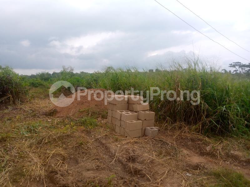 Residential Land for sale Lane 5, Aba Ayo Area Near Oke Mekun Elebu Extension, Oluyole Extension Off Akala Express Akala Express Ibadan Oyo - 0