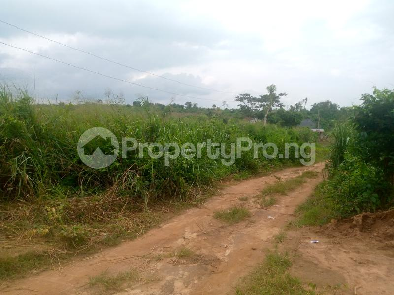 Residential Land for sale Lane 5, Aba Ayo Area Near Oke Mekun Elebu Extension, Oluyole Extension Off Akala Express Akala Express Ibadan Oyo - 1