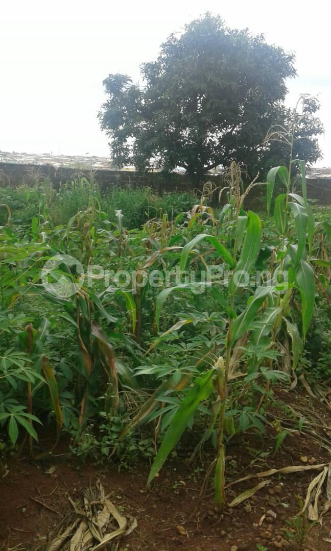 3 bedroom Blocks of Flats for sale Akingbade Area, Old Ife Road Iwo Rd Ibadan Oyo - 4